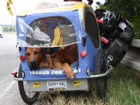 Cycle for a better World / By bicycle and two dogs ...